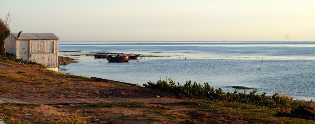 Barche in Tunisia