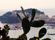 Ponza e Ventotene, selvagge, bellissime e ricche di piaceri