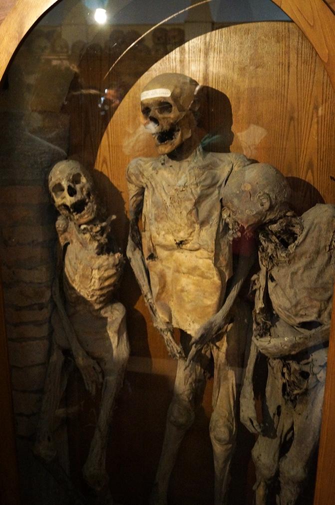 chiesa-dei-morti-urbania-scheletri-completi