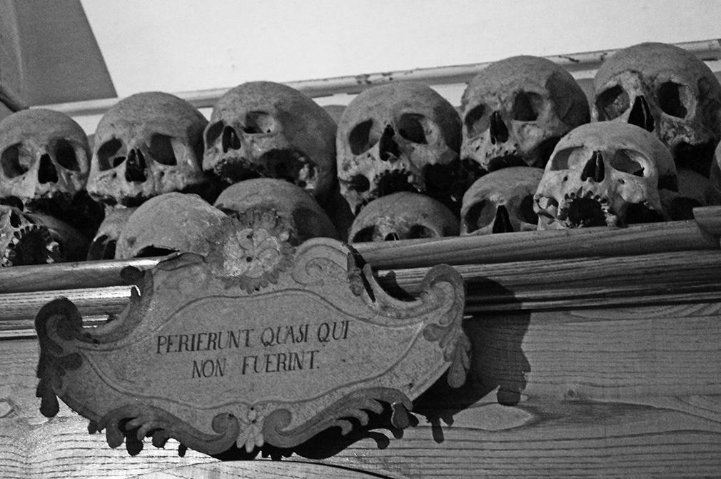 Teschi esposti nel cimitero delle mummie