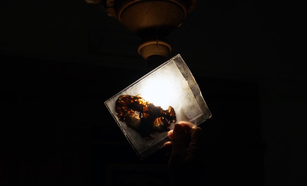 Il cuore di una delle mummie