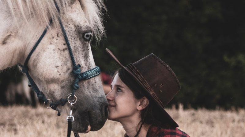 Il focus a cavallo, obiettivi, direzione (da una, da qualche, da nessuna parte)